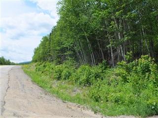 Terrain vacant à vendre, Baie-Saint-Paul