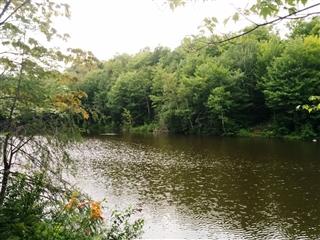 Terrain vacant à vendre, Sainte-Anne-des-Lacs