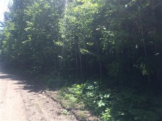 Terrain vacant à vendre, Saint-Aimé-du-Lac-des-Îles