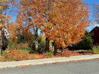 Vacant lot for sale, Cowansville