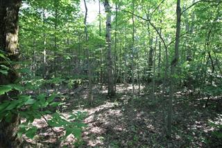 Vacant lot for sale, Bromont