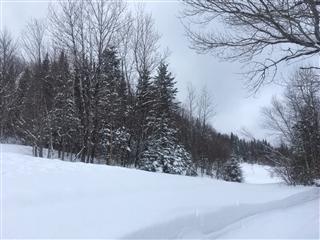 Terrain vacant à vendre, Sainte-Brigitte-de-Laval