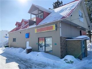 Duplex à vendre, Lac-des-Écorces