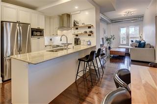 Appartement / Condo à vendre, Mont-Royal