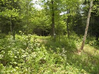 Terrain vacant à vendre, Saint-Faustin/Lac-Carré